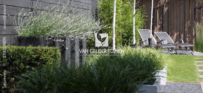 Design plantenbakken met groenblijvende siergrassen en lavendel in moderne tuin