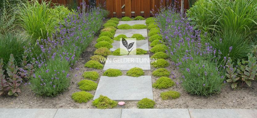 Mooie zichtlijnen in groene achtertuin