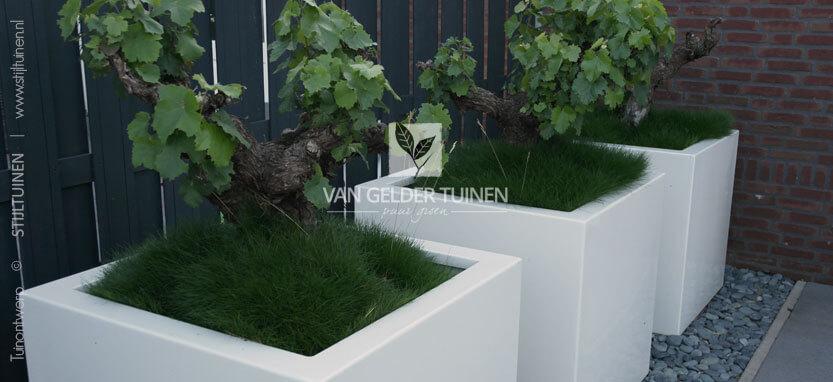 Witte plantenbakken voor in tuin