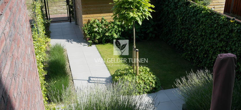Moderne tuin bij nieuwbouwwoning - tuinaanleg van Gelder TUINEN