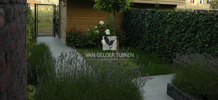 Aanleg moderne nieuwbouw tuin bij nieuwbouwwoning van for Strakke tuinen met siergrassen