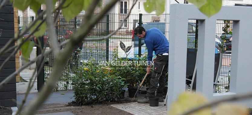 Aanplant van bomen en tuinplanten in organische tuin in Barendrecht